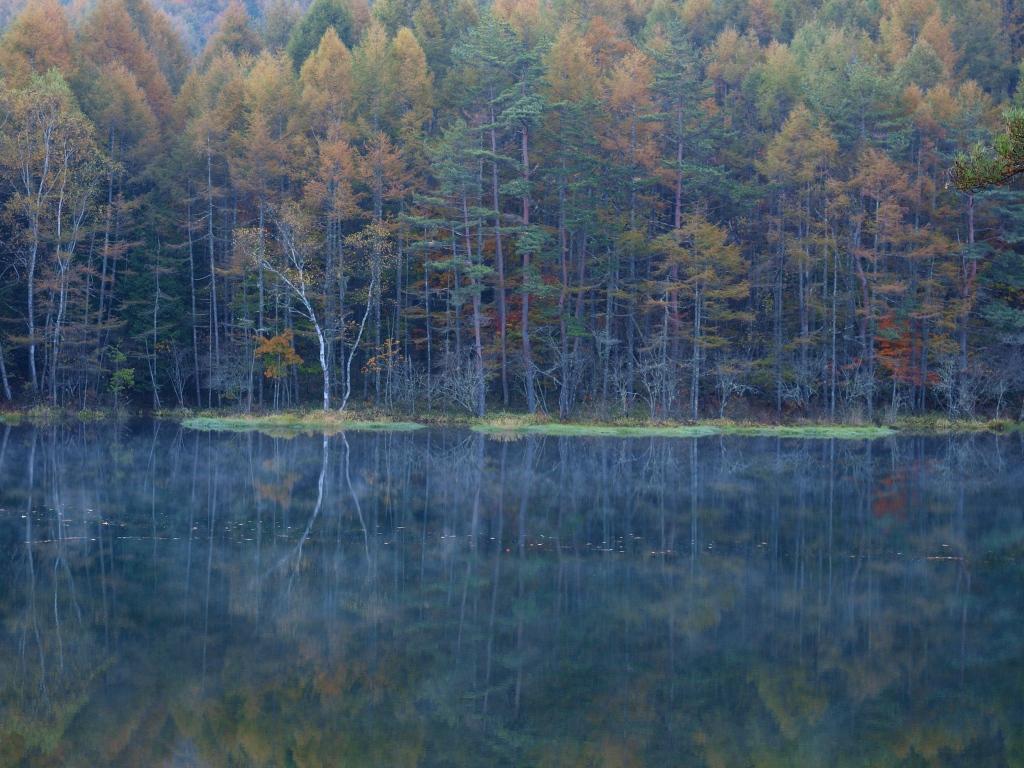 朝霧と紅葉の御射鹿池20141018_4