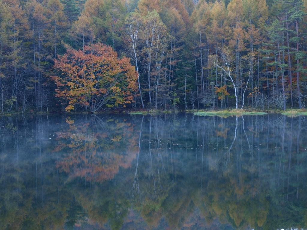朝霧と紅葉の御射鹿池20141018_5