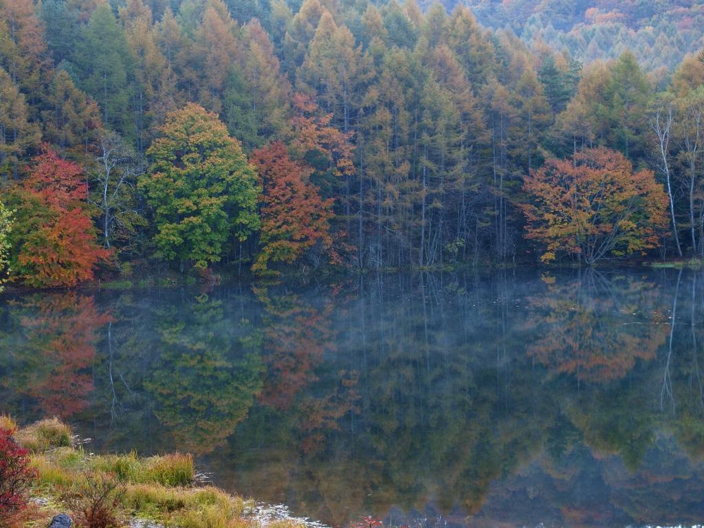 朝霧と紅葉の御射鹿池20141018_1
