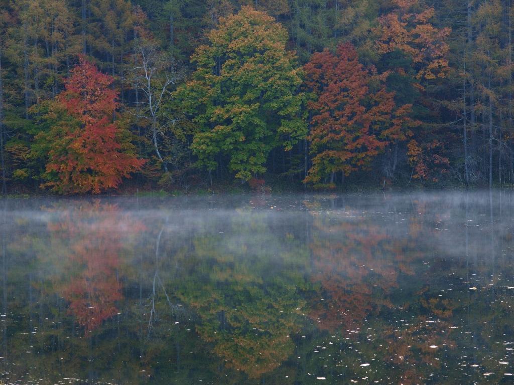 朝霧と紅葉の御射鹿池20141018_2