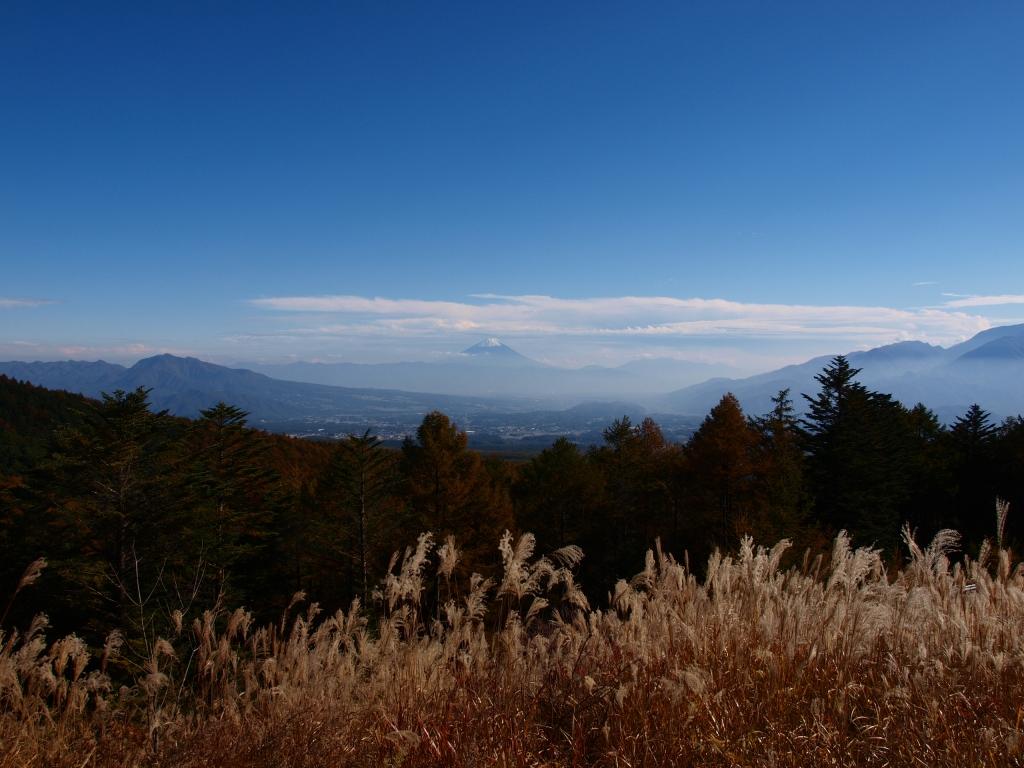 秋の観音平から富士山
