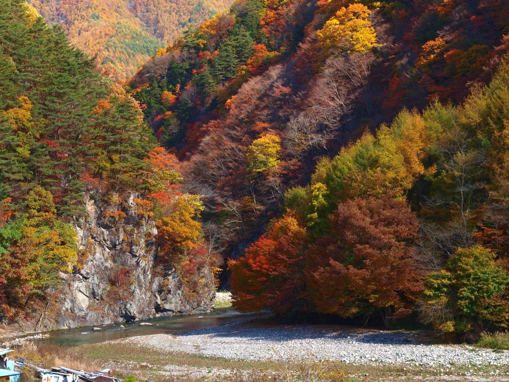 佐久広瀬駅から望む渓谷の紅葉