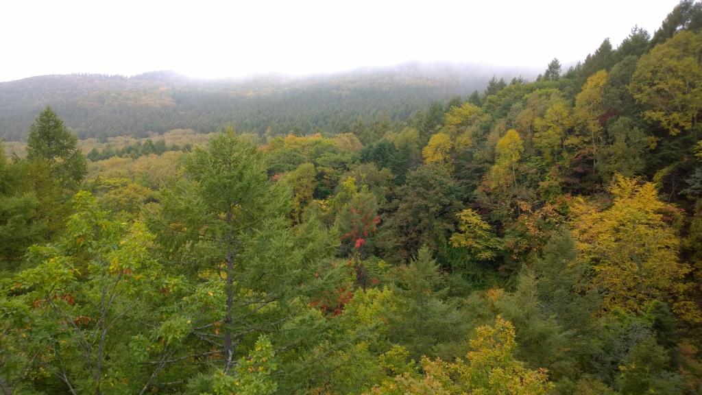紅葉の八ヶ嶺橋から八ヶ岳遠望