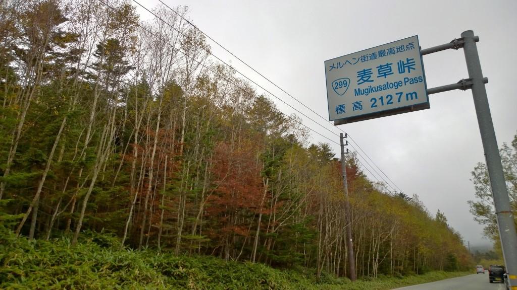 麦草峠141004