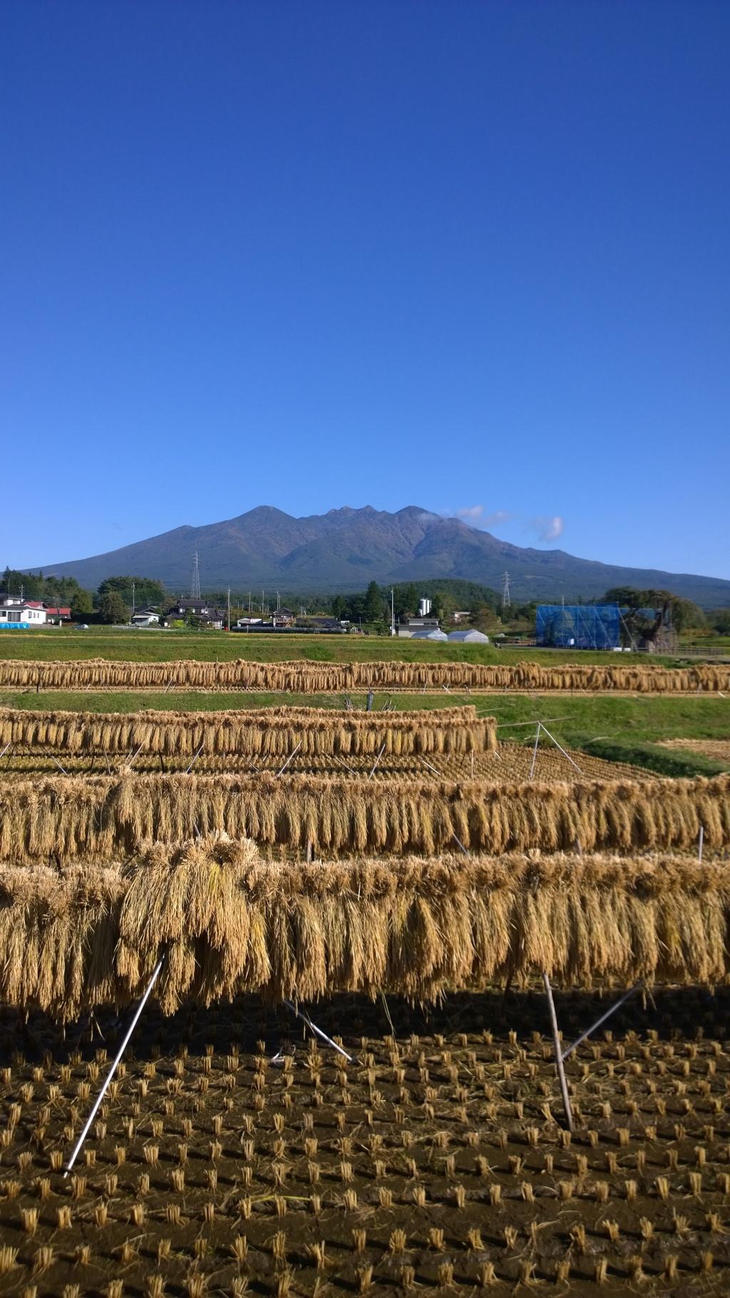 秋晴れの八ヶ岳2