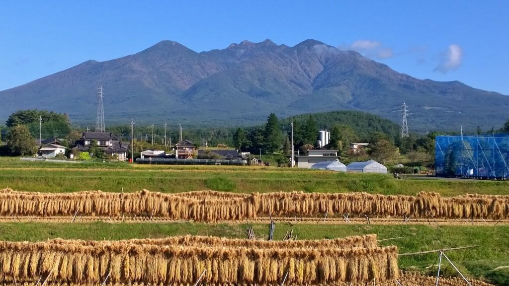 秋晴れの八ヶ岳