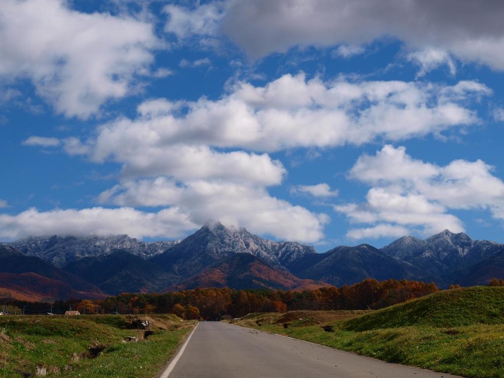 落葉松の黄葉と冠雪した八ヶ岳20141103_2