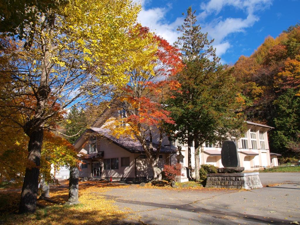 旧藤沢小学校のモミジ紅葉20141103_5
