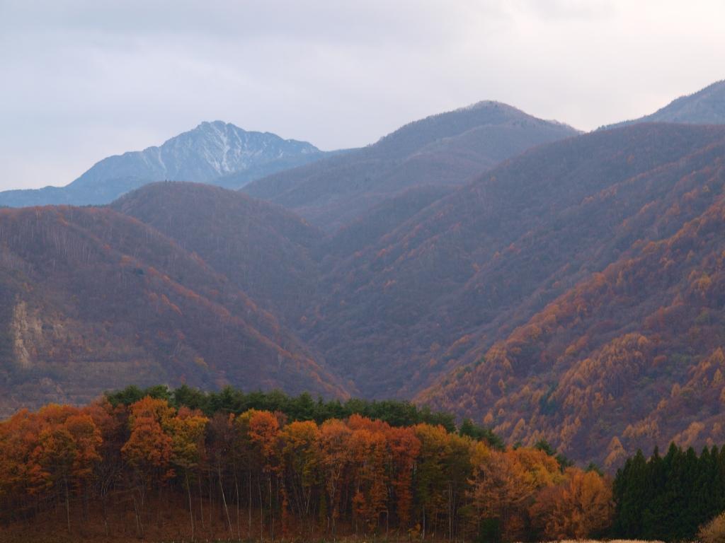 甲斐駒と山麓の紅葉2