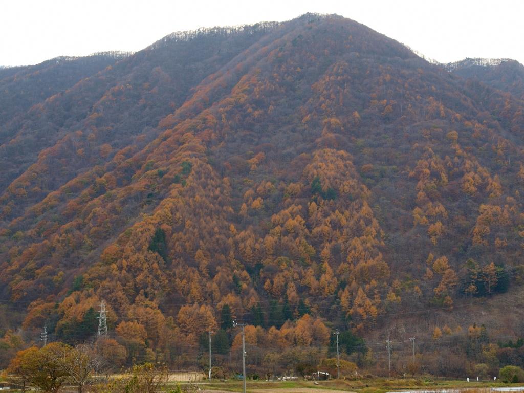 終わりつつある黄葉の山