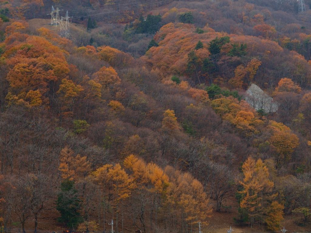 塩沢温泉の紅葉