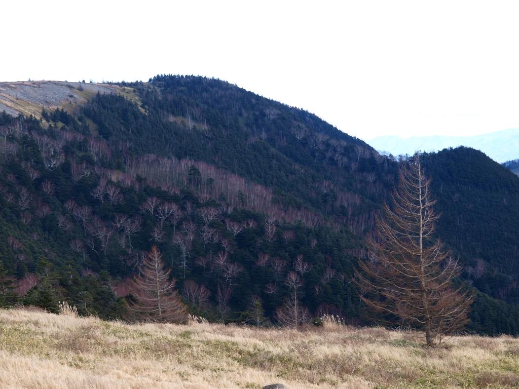 美ヶ原の冬模様