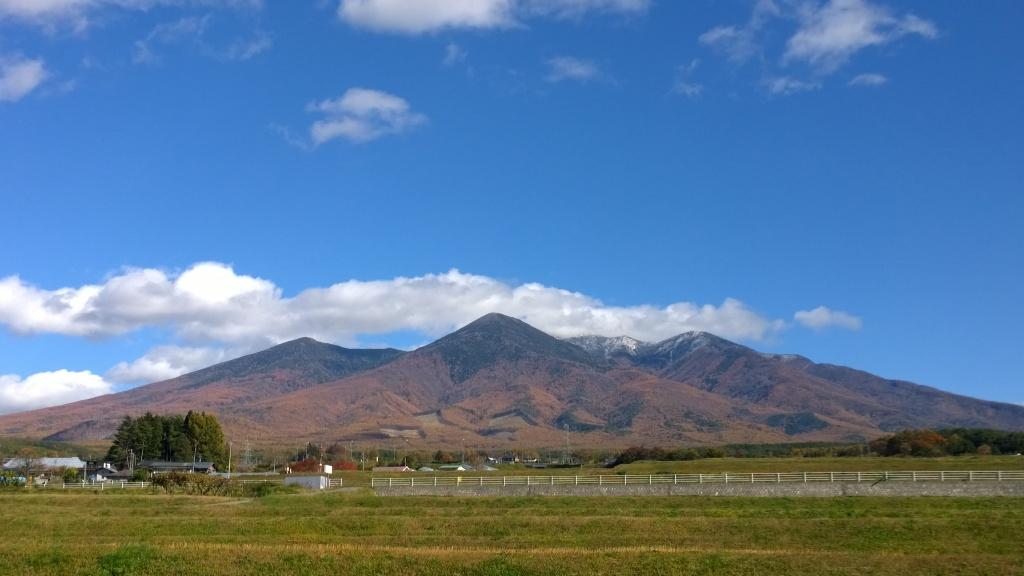 落葉松の黄葉と冠雪した八ヶ岳20141103_6