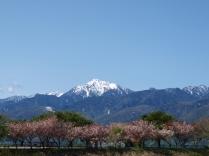 5月:富士見町葛窪