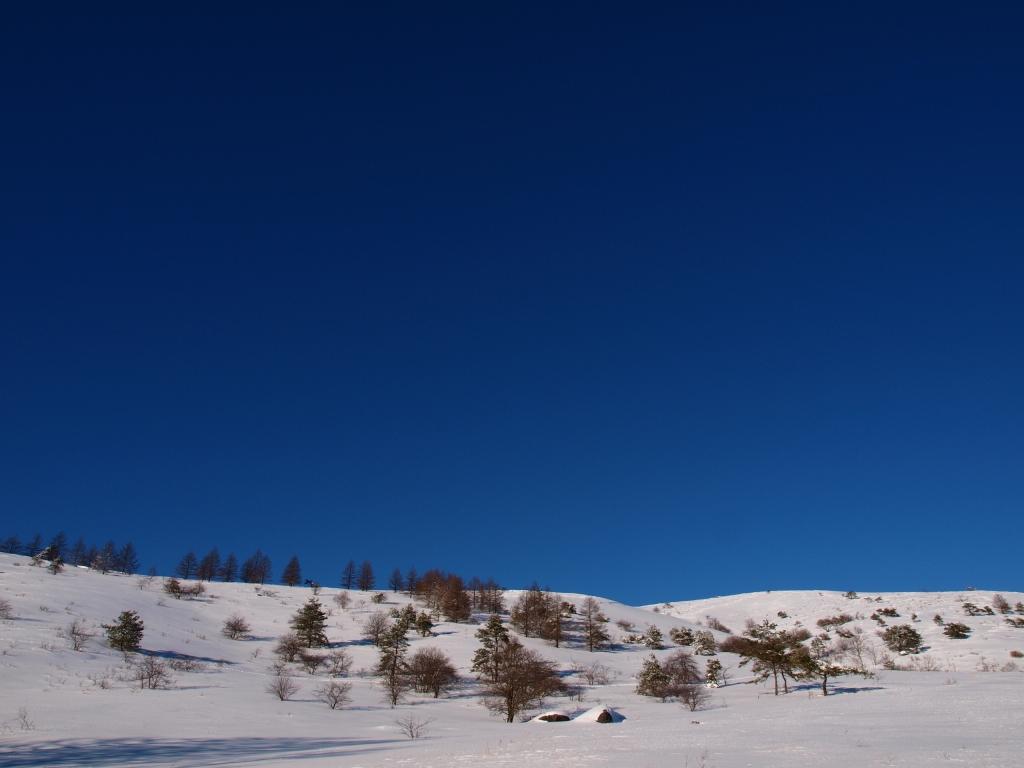 車山の雪原と碧空