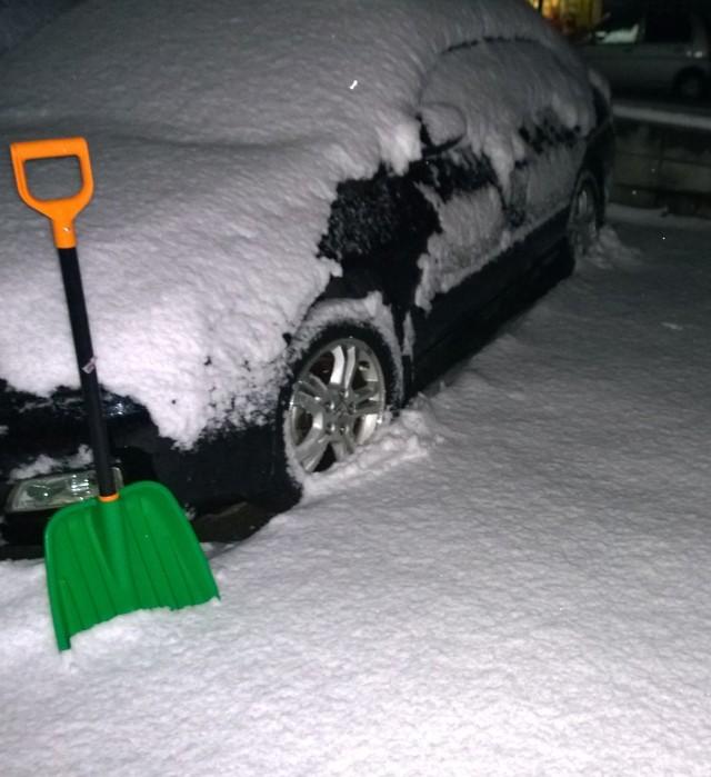 降雪量確認