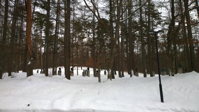 雪の八ヶ岳美術館庭園1