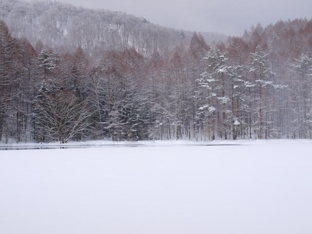 雪の御射鹿池2