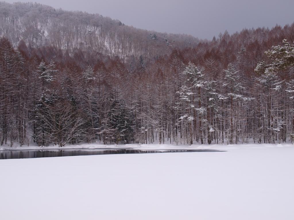 雪の御射鹿池7