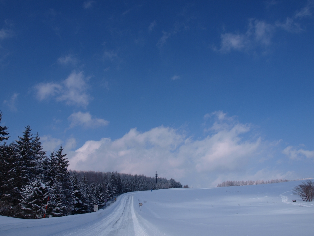 碧空と雪原の霧ヶ峰
