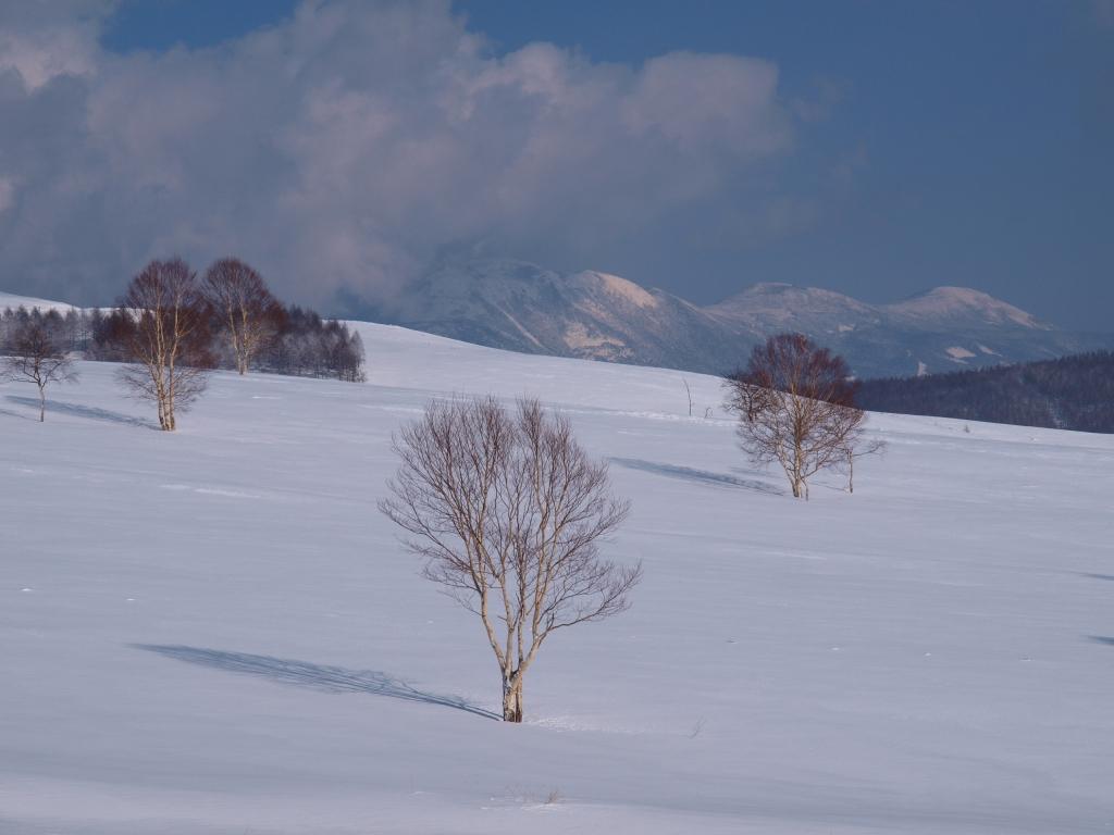 霧ヶ峰の雪原と八ヶ岳遠望