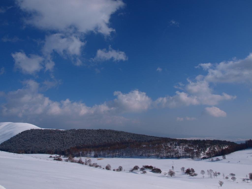 雪原の池のくるみ