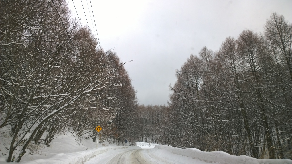 雪の御射鹿池アプローチ