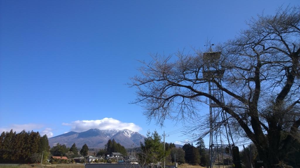 碧空の八ヶ岳と開花前の桜