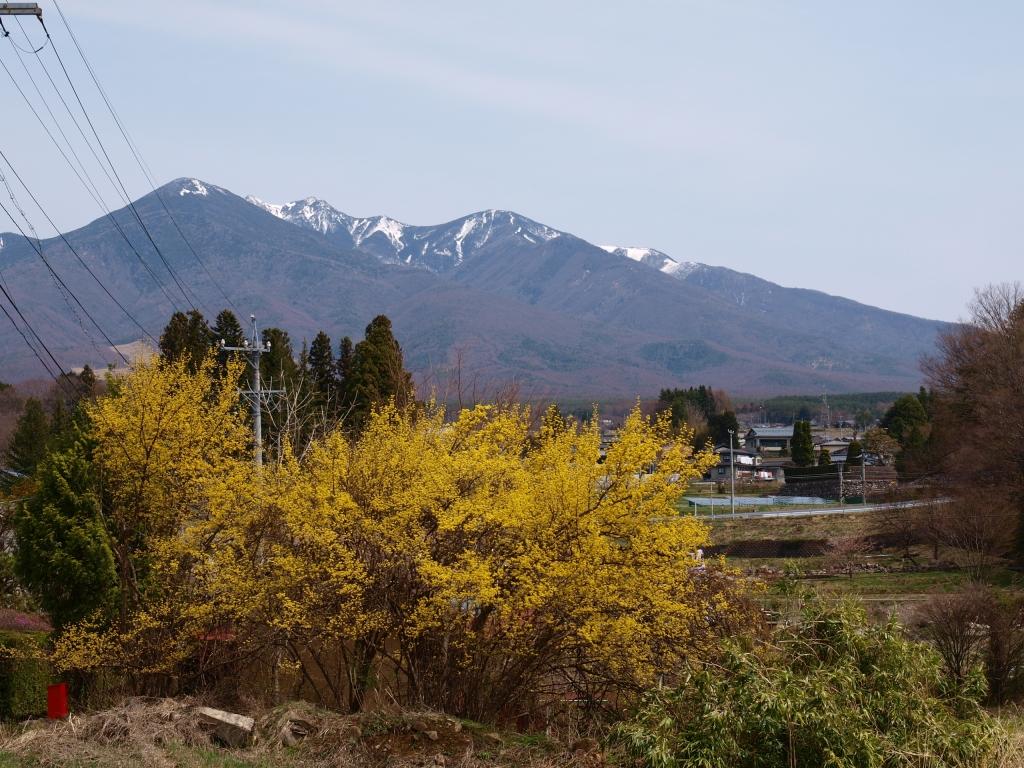 春の八ヶ岳遠望