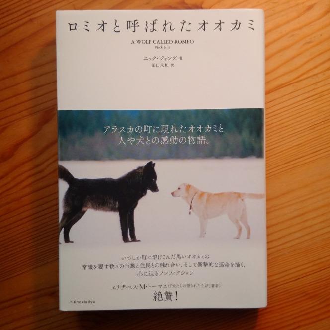 今月の読本「ロミオと呼ばれたオオカミ」(ニック・ジャンズ:著 田口未和:訳 エクスナレッジ)人と犬と共にいる事を選んだ野生動物と、極北の地に生きる人々の想いと葛藤