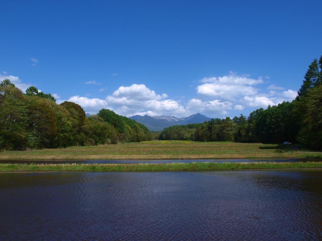 水を湛えた水田と八ヶ岳遠望