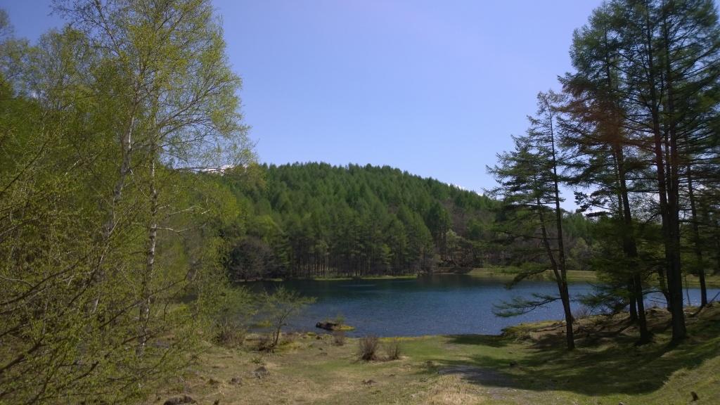 新緑の御射鹿池全景