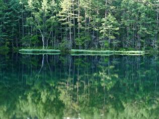 梅雨間の御射鹿池試写2