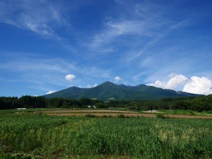 盛夏の八ヶ岳