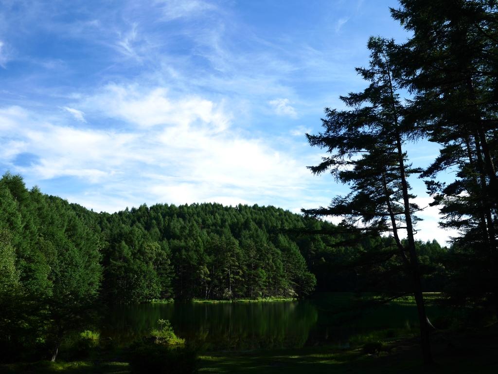 盛夏の御射鹿池3