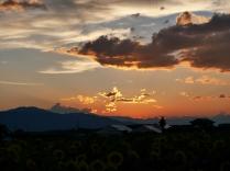 盛夏の夕暮れ、立沢にて2