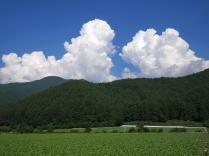 沸き立つ雲とレタス畑