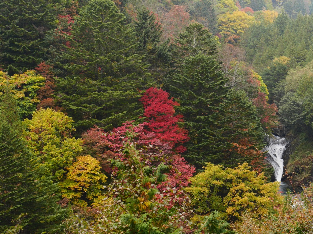 曇天のおしどり隠しの滝3