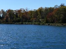 秋色の野辺山16