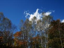 秋色の野辺山4