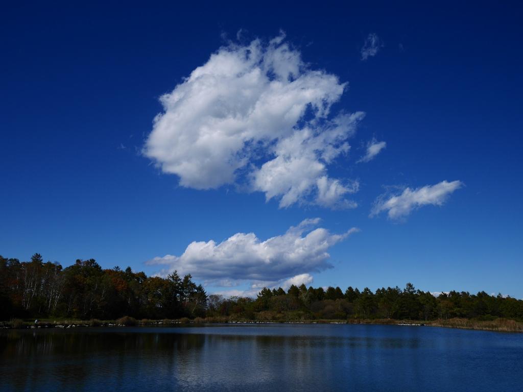 秋色の野辺山6