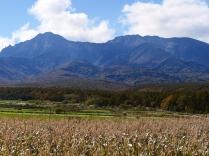 秋色の野辺山7