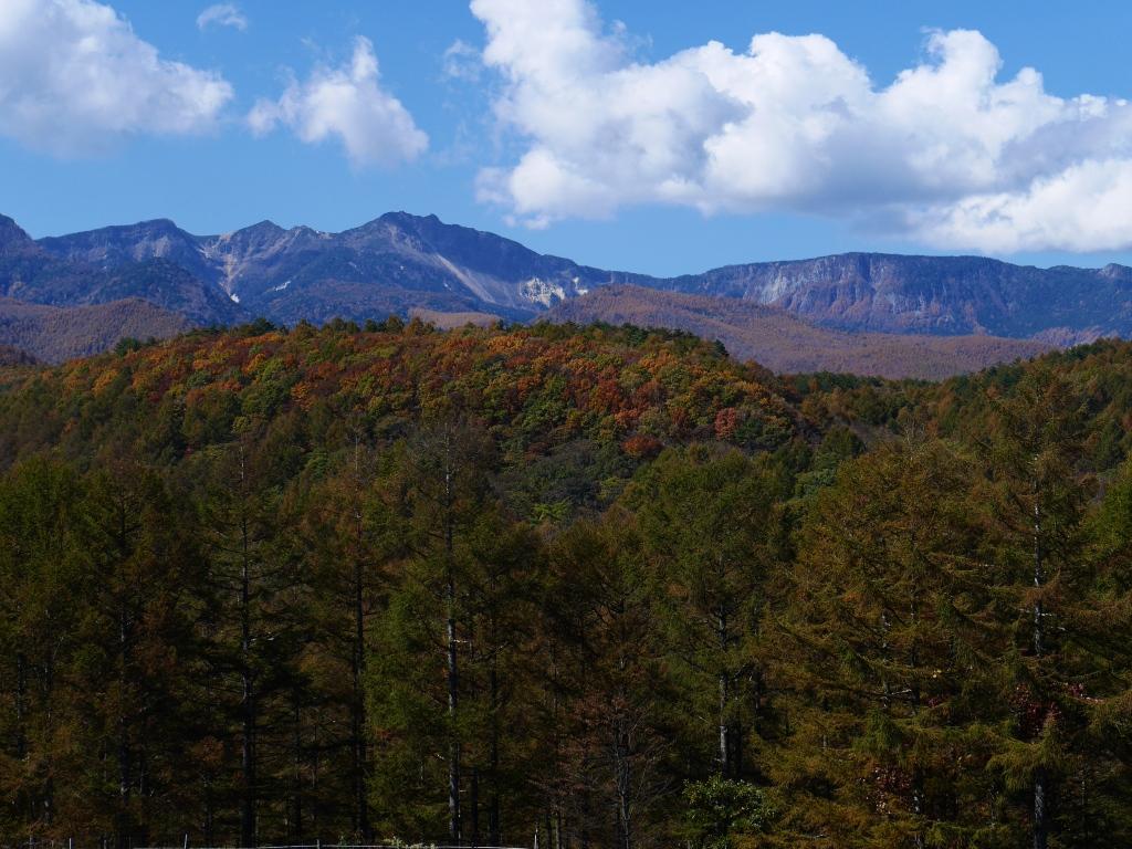 秋色の八ヶ岳3