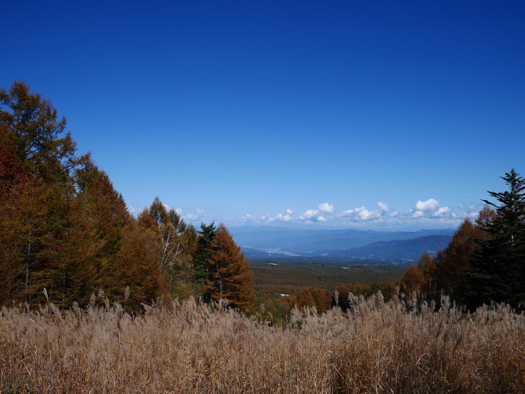 秋色の八ヶ岳4
