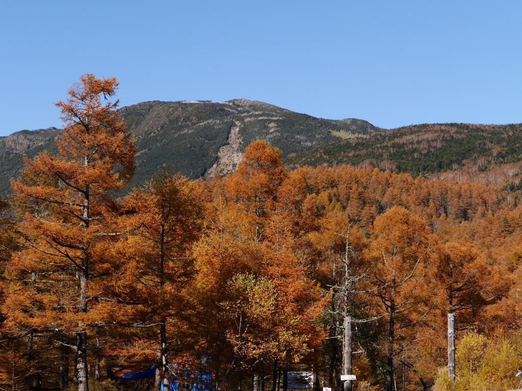 秋色の八ヶ岳7