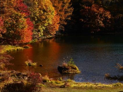 午後の御射鹿池、紅葉1