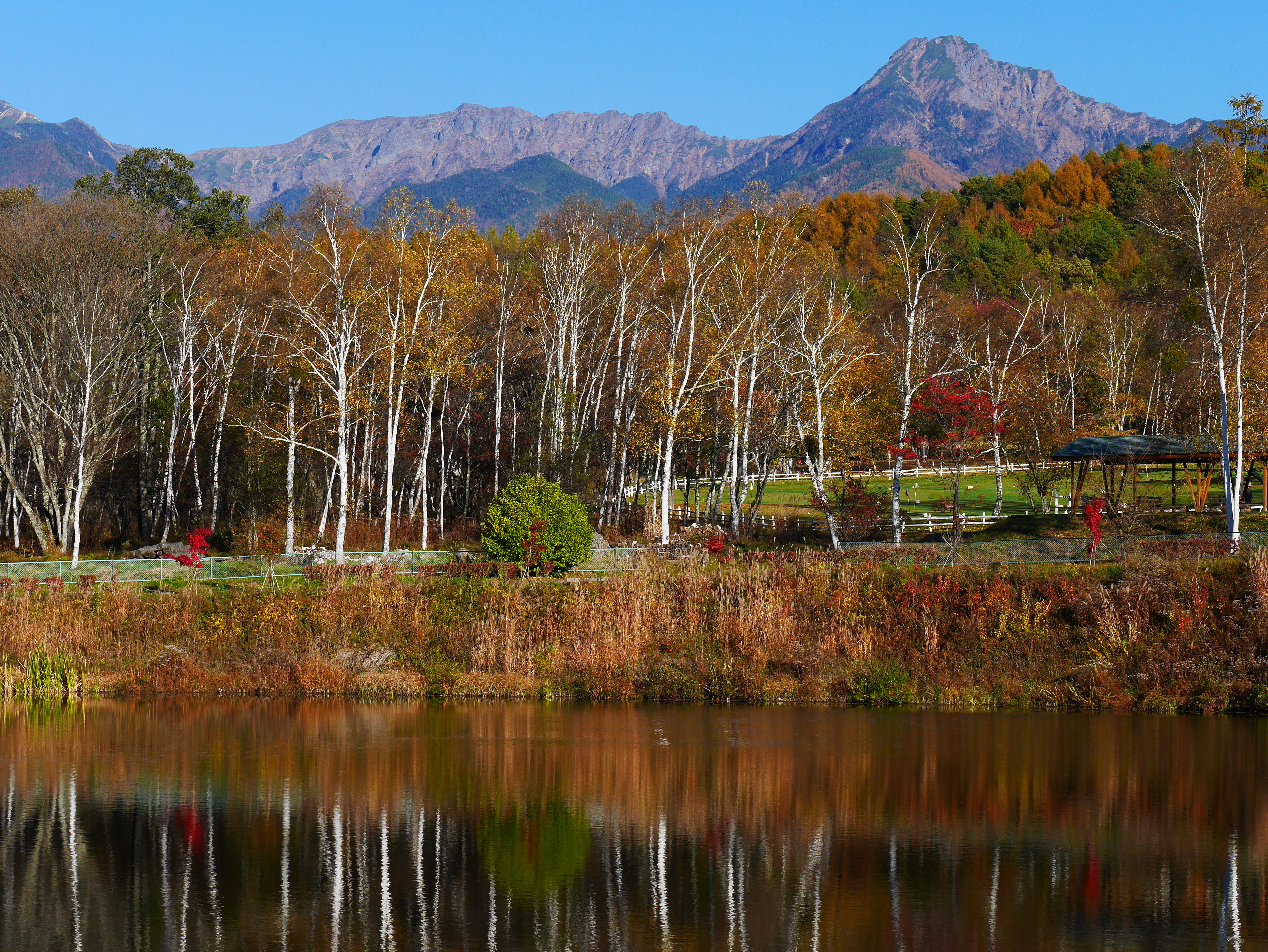 八ヶ岳自然文化園 | 八ヶ岳の南...