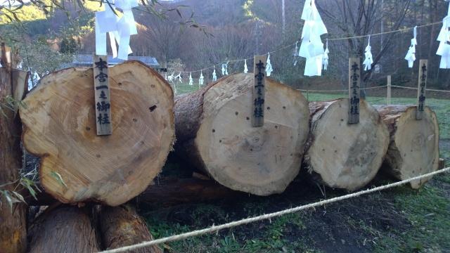 伐り出された上社本宮の御柱