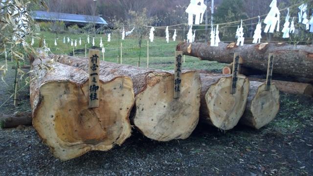 伐り出された上社前宮の御柱