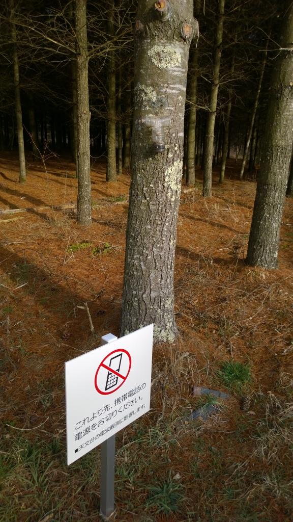 演習林内の携帯電話禁止看板
